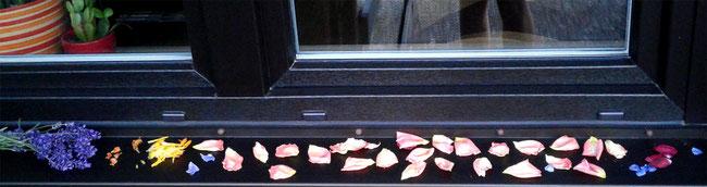 blütenblätter trocknen, fensterbank