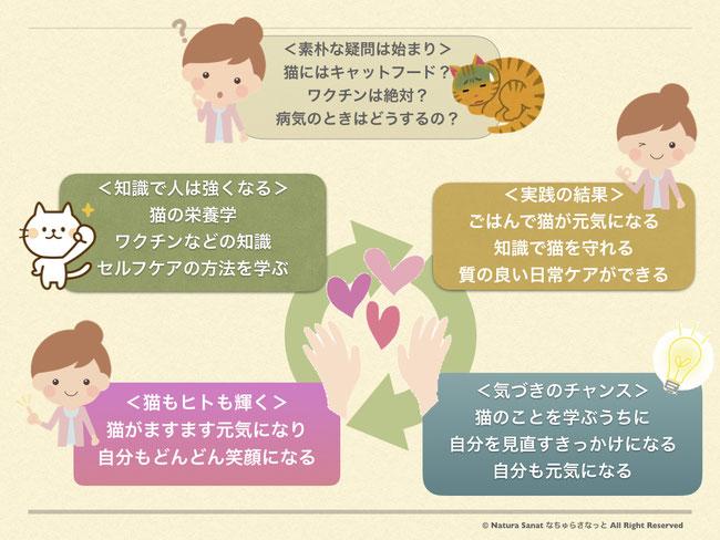 なちゅらさなっとの取り組み、猫と人の関係性、気づきのループ図