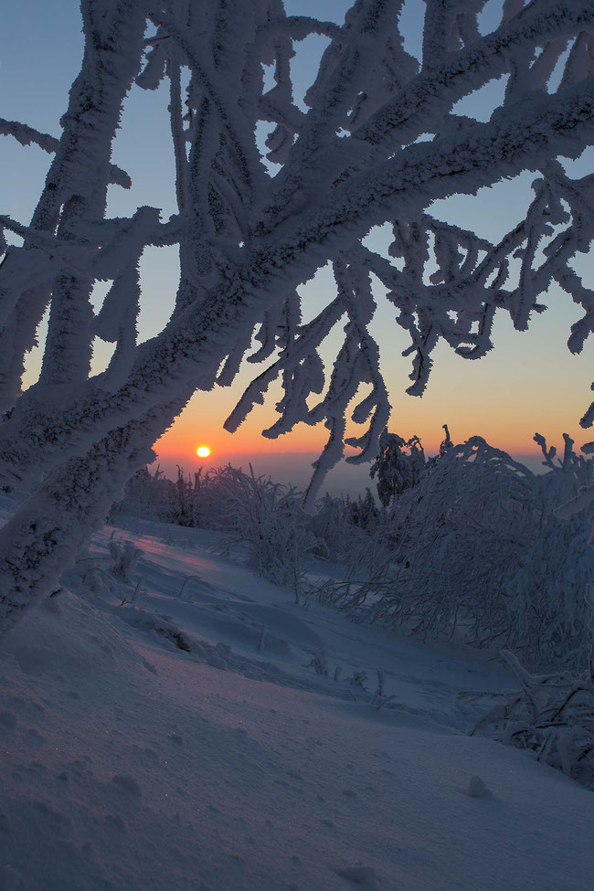 Beautiful orange sunset in frozen snow winter landscape, Taunus mountains, Hessen, Germany