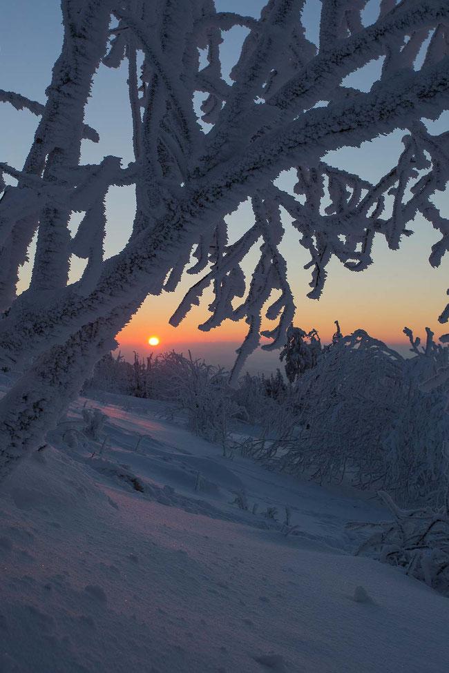 Sunset in snowy winter landscape, Grosser Feldberg, Taunus mountains, Hessen, Germany, Europe