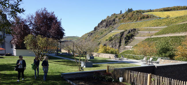 best german vineyards - the Kupfergrube