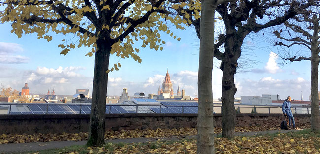 Mainz and its Cathedral - a view from the famous Kupferberg hillside terraces