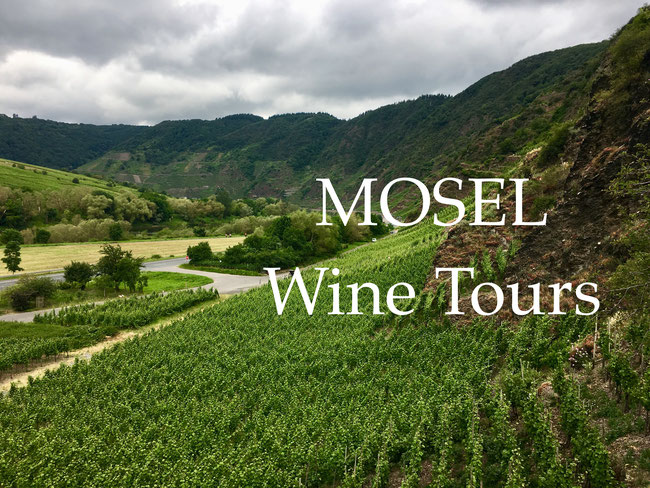 Mosel Wine Tours by BottleStops