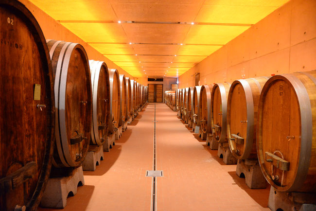 The new Cabinett Cellar, now located in Domäne Steinberg.