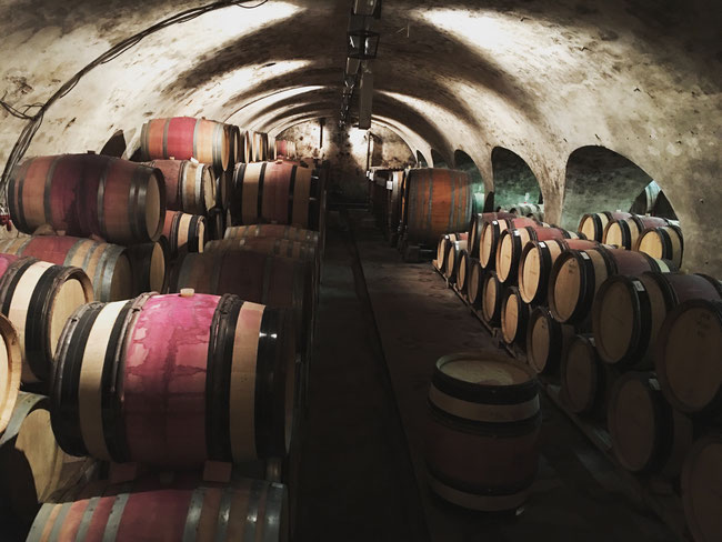 Historic barrel wine cellar of St Antony - Nierstein - Rheinhessen, Germany