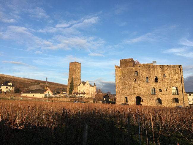 best german vineyards - the rosengarten