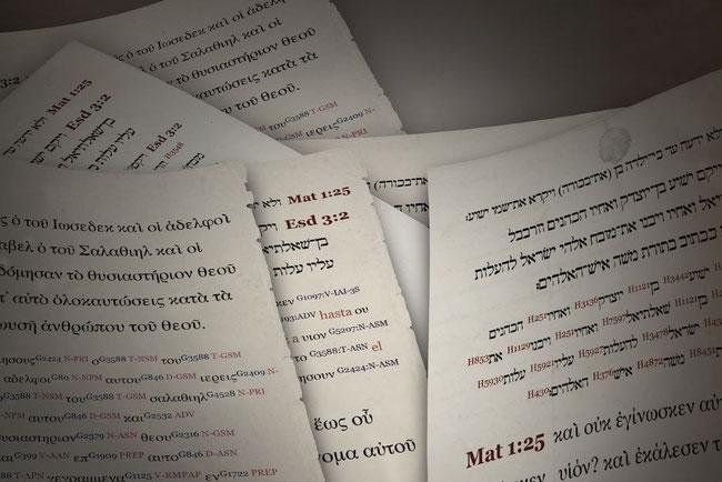 Die Übersetzer der Neue-Welt-Übersetzung sind der biblischen Urtexte nicht mächtig