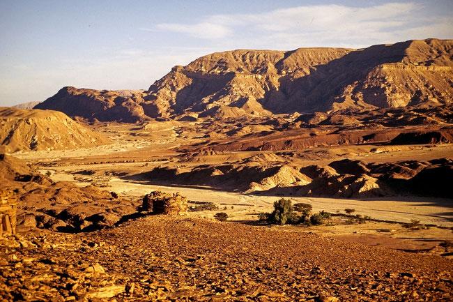 """Der """"Volksverschlinger"""" greift uns an, wenn wir in der """"Wüste Sinai"""" sind. Aber wenn wir dort hinauf zum Pfahl Golgathas schauen, siegen wir über ihn. https://www.freudenbotschaft.net/gleichnisse/das-biblische-gleichnis-vom-erhobenen-stab-gottes/"""