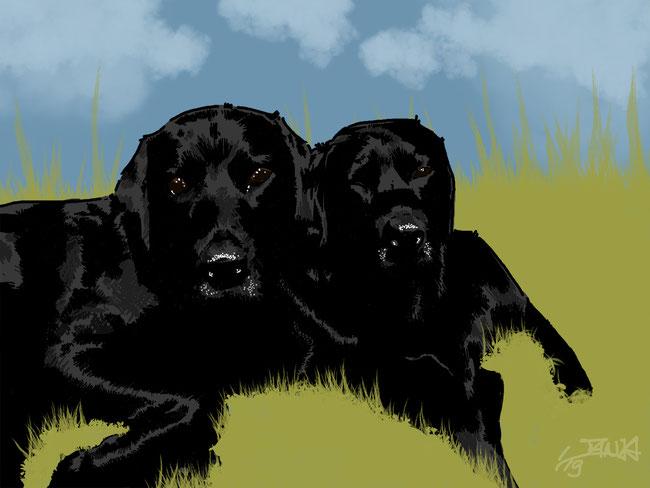 Photoshop, digital, Hund, Hunde, schwarz, Geschwister, Fellnase, Zeichnung, Wiese, Labrador, wuff