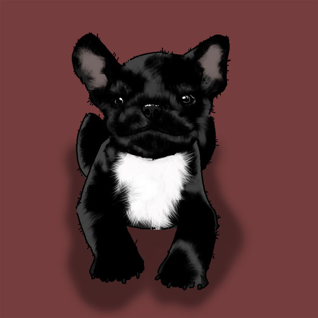 Photoshop, digital, Brushes, Hund, Tier, Zeichnung, probieren, üben, Fellpinsel, Fell, Pinsel, authentisch