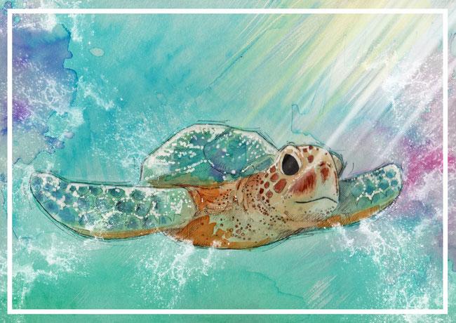 Schildkröte: Zeichnung mit Fineline und Aquarell und digitaler Nachbearbeitung