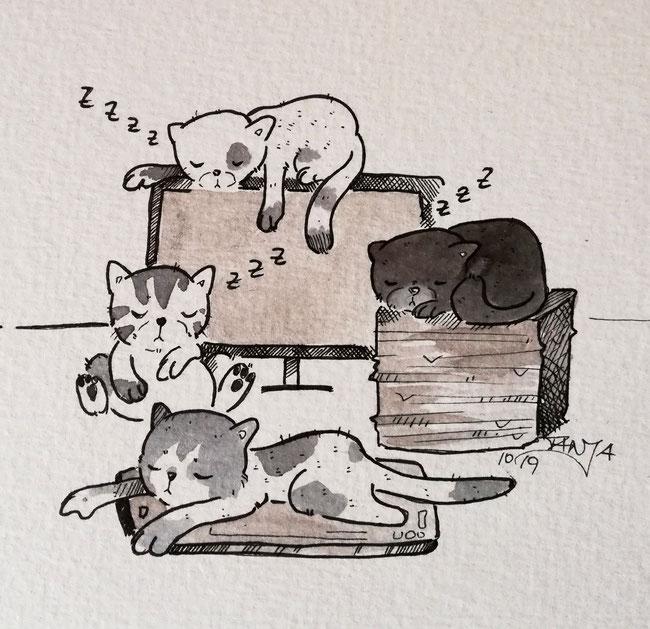 #Oktober #Zeichnung #ink #black #white #Tusche #Fineliner #schwarz #weiß #Challenge #drawing #illustration #inktober2019 #catober #catober2019 #catsofinstagram #cat #Katze #süß #niedlich #Büro #Office #Arbeit #work