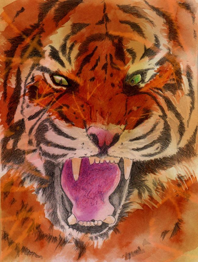 365-Tage-Doodle-Challenge - Stichwort: Tiger