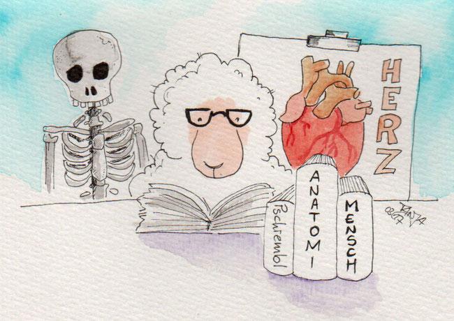 365-Tage-Doodle-Challenge - Stichwort: Arzt
