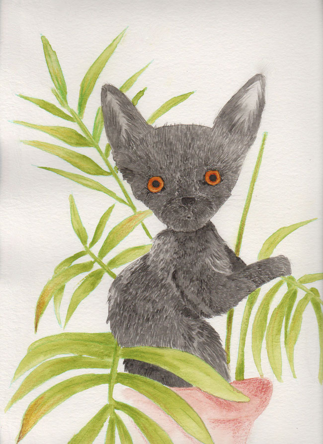 365-Tage-Doodle-Challenge - Stichwort: Katze
