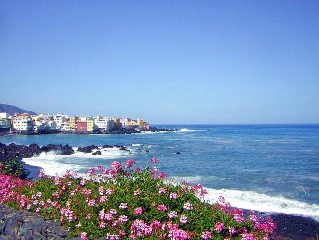 Playa Jardin / Punta Brava