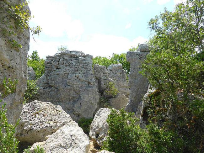 Bois de Païolive en sud Ardèche, et ses mystérieux rochers