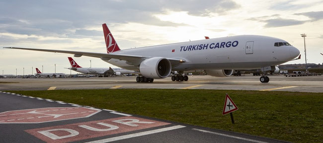 Will accommodate Opticooler containers on its main deck soon: B777F of TK Cargo  -  company courtesy