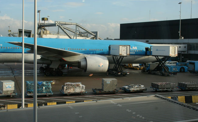 KLM Cargo concentrates on freight transports in the lower decks of their passenger fleet  -  photo: ms