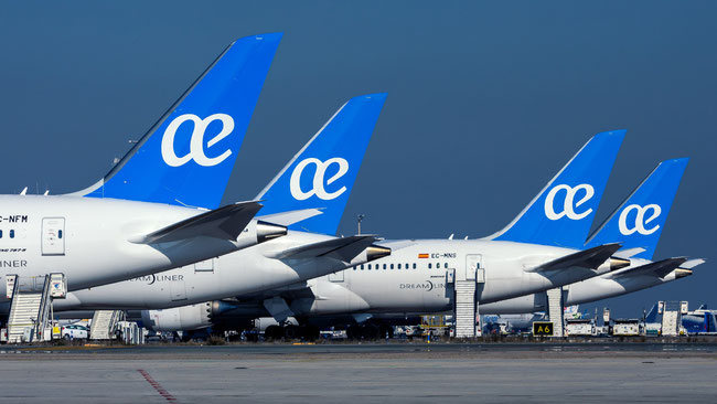 Air Europa's longhaul fleet comprises of 8 A330 and 8 B787 jetliners  -  image courtesy of Air Europa