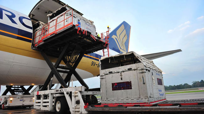 SATS-PSA initiative to strengthen air-sea cargo hub position
