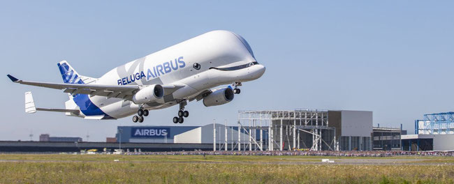 Airbus intends to build five Beluga XLs  -  photo: Airbus