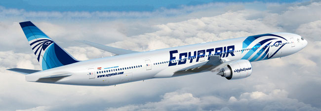 Egyptair got green light to transport cargo to Canada again in the holds of their passenger fleet  -  company courtesy