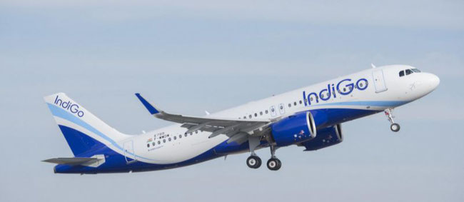 Are IndiGo operated long-haul flights coming next?  -  photo: Airbus