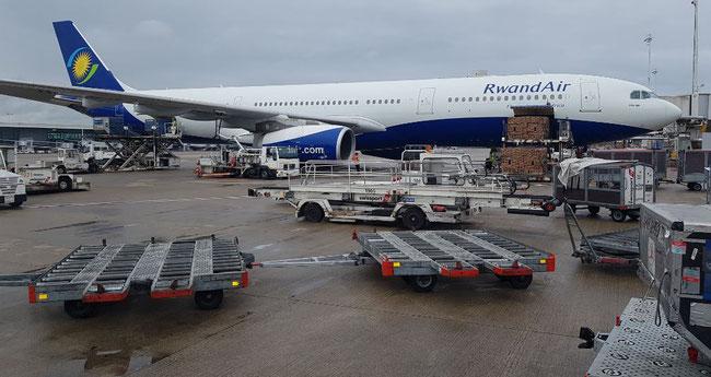 RwandAir operated Boeing 777 unloading flowers at Brussels Airport  -  photo: CFG / hs