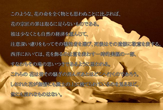 引用:茶の本