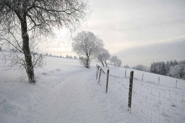 Den Winter im Sauerland geniessen