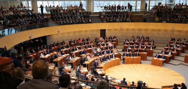 Die neue FDP-Fraktion, Quelle: FDP-Landtagsfraktion