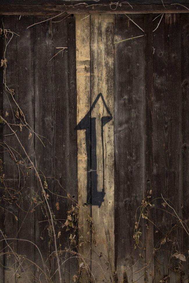 Andrea - Foto 15 - Holzschuppen