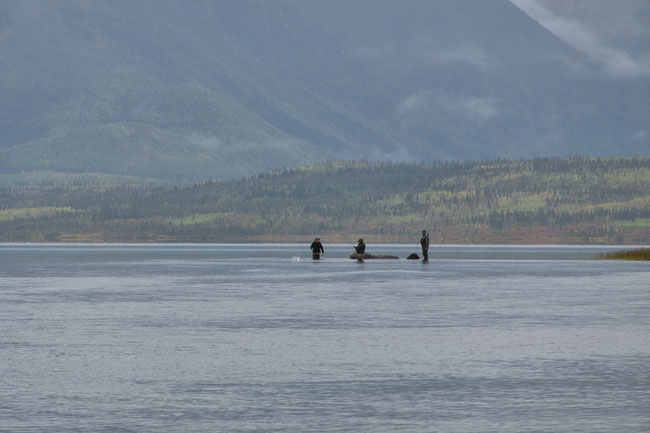 Flyfishing Walker Lake, Alaska