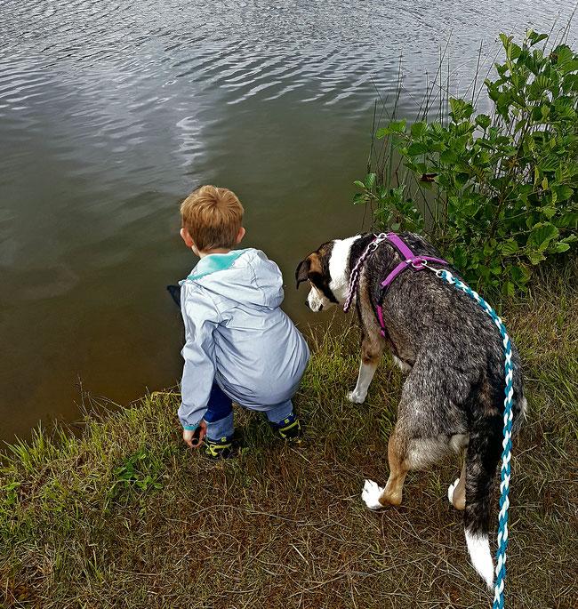 Kind und Hund - gemeinsam durch Dick und Dünn