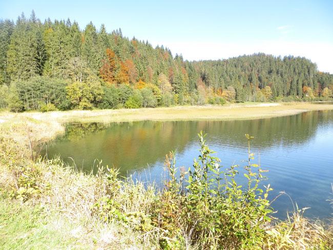 Hinter dem See mit Blick auf Niederseewald