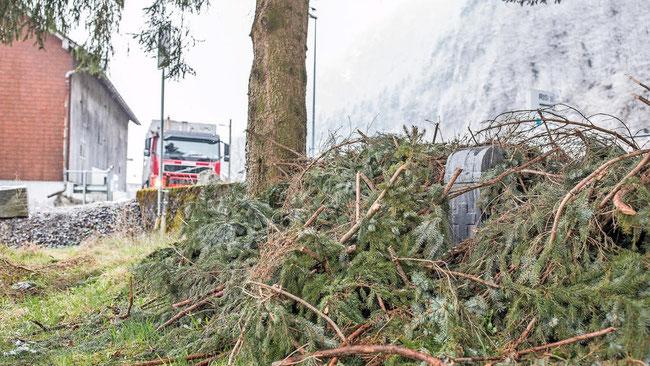 """Der vierte """"Fahrts""""-Gedenkstein unter Tannenchris - Dokument eines Konflikts zwischen dem Grundbesitzer und den Behörden. (Foto: Daniel Fischli, Südostschweiz, Glarus)"""