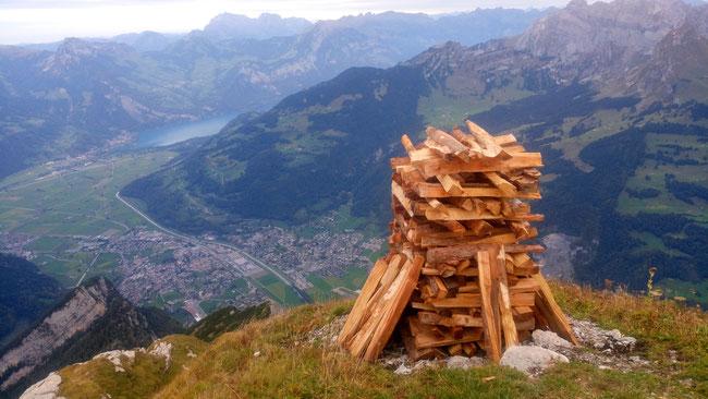 Der Holzhaufen wächst... Blick ins Tal