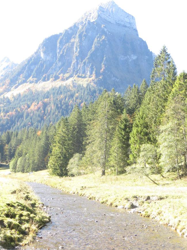 Sulzbach - Zufluss zum Obersee