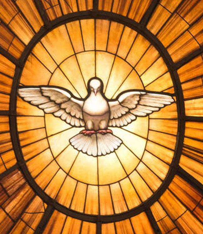 Darstellung des Heiligen Geistes symbolisch als Taube. (Bild: Petersdom in Rom)
