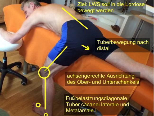 Dehnung Beugergruppe geschlossene Muskelkette, Abduktorentraining im Stand