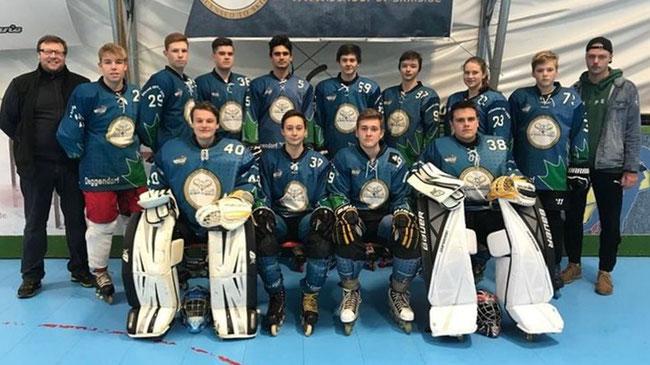 Vizemeistertitel 2018 - Juniorenteam der Deggendorf Pflanz  Foto: Verein