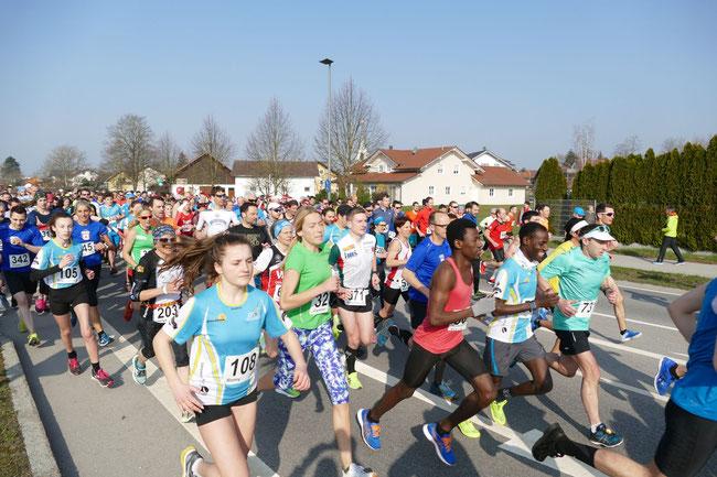 Über 400 Teilnehmer gingen 2019 bei der Halbmarathon-Veranstaltung an den Start.