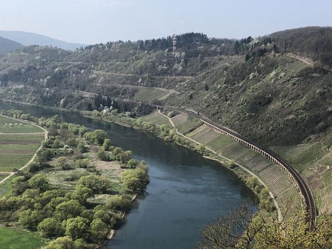 Aussicht vom Prinzenkopf Richtung Reil mit der Kanonbahn
