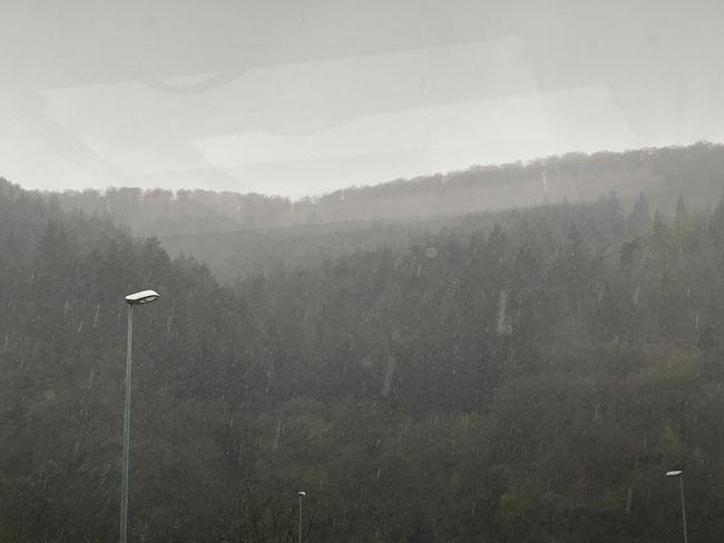 Grauppelschauer Stellplatz Traben 13. April 2019