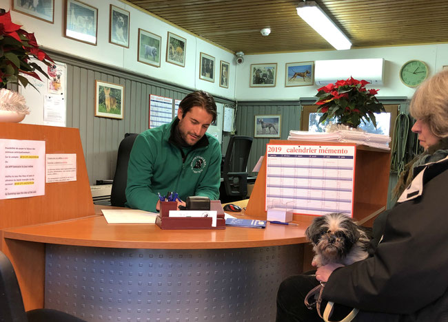 Nos amis fidèles - l'accueil par Alban de Ville - pension pour chiens et chats lasnes brabant wallon - www.amis-fideles.be