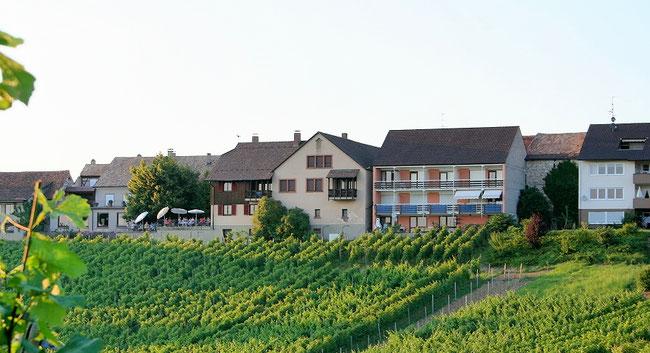 Gasthaus zum Ochsen und Hotel garni Haus im Pflanzer
