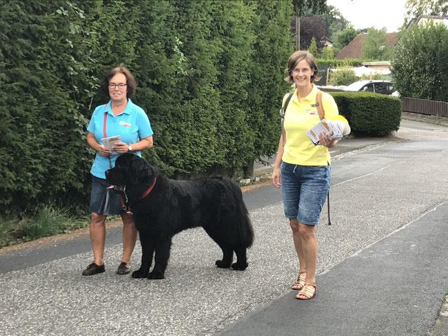 Auf Wahlkampf-Tour: Dagmar Ziegner mit Zeus und Jessica Gaitskell