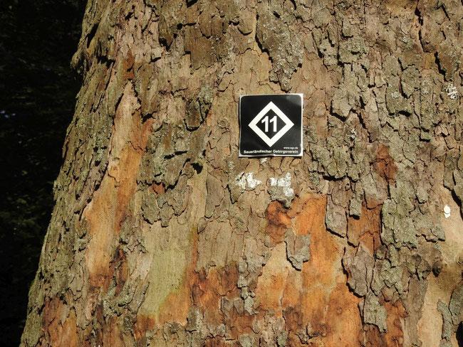 Wanderwegezeichen (im Wegeverlauf in der Regel durch das Rautezeichen ohne Zahl oder als Raute mit danebenstehender 11 gekennzeichnet)