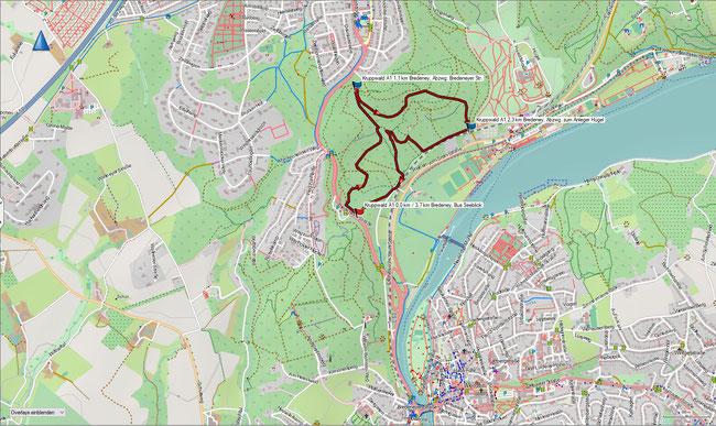 Karte Kruppwald A1 im Grundmaßstab der übrigen Wanderungen